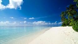 Island Sanctury