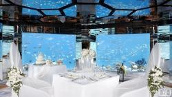 Sea Underwater Restaurant Wedding