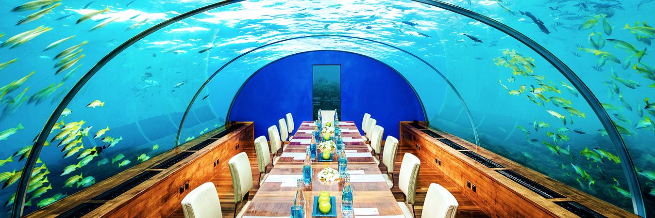 Conrad maldives rangali island alpha maldives holiday for Hotel conrad maldivas islas rangali